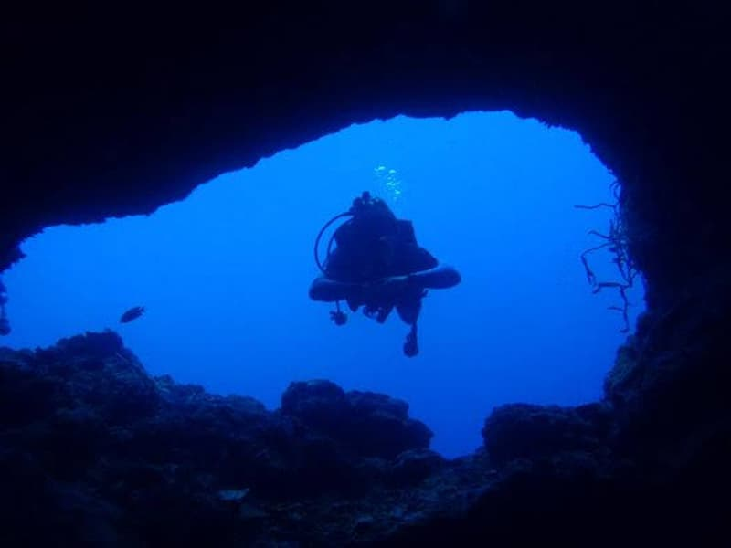 Moalboal Dive Sites